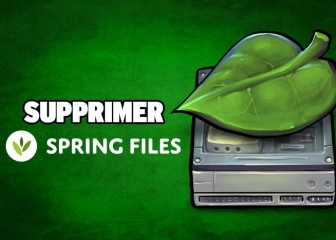supprimer-springfiles