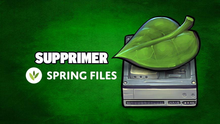 Supprimer SpringFiles