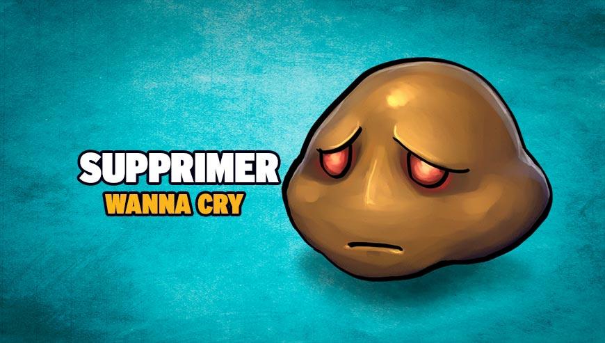 Supprimer Wanna Cry