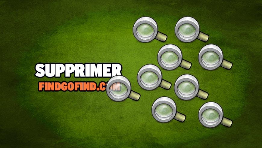 Supprimer findgofind.com