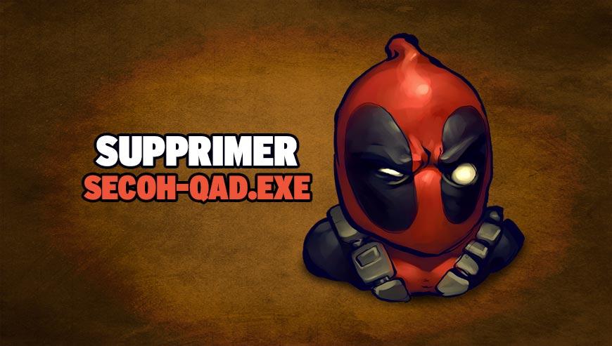 Supprimer SECOH-QAD.EXE